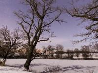 Meerpfuhl_Winter
