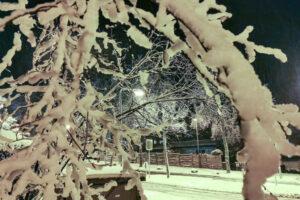 Frischer Schnee